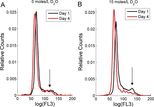 The effect of deuterium oxide on RBL-2H3 cell cycle as shown by propidium iodide intensity (FL3) histogram plots.Cell counts were normalized to unit area. Cells grown (A) in media containing 0 moles/L D2O and (B) in media containing 15 moles/L D2O. The black lines represent one-day old cultures and the red lines represent four-day old cultures. The arrows indicates position of the G2–M-cell cycle phase.