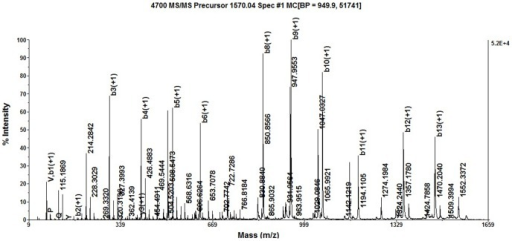 Analysis of MALDI TOF/TOF MS/MS about the molecular ion peak of 1570.0358.