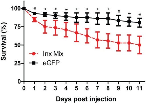 Effect of eGFP (black squares) and innexin (red circles) dsRNA injection on mosquito survival.Values are means ± SEM. n = 3 replicates of 24 mosquitoes. Asterisks indicate a significant difference in survival between eGFP and innexin dsRNA injected mosquitoes as determined by a two-way ANOVA with a Holm-Sidak's post-hoc test.