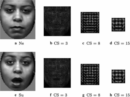 Examples of HOG (9 orientations) processing on registered face images (Ne Neutral, Su Surprised.). CS is the cell size of the processed images