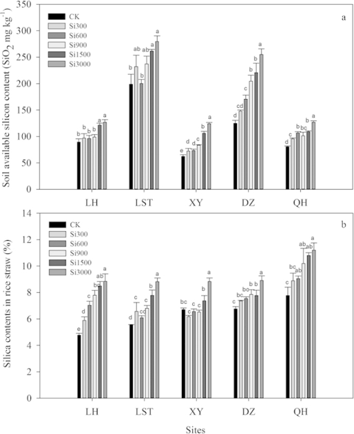 Effect of silicate fertilizer application rate on post-harvest soil available Si contents (a) and silica contents in rice straw (b) at the five sites.Data are means of three replicates. Mean values followed by different letters at the same site differ significantly at the (P < 0.05) level of significance.