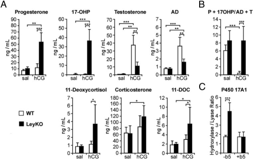Steroidogenesis stimulation with hCG leads to accumulation of Prog and 17OHP in LeyKO mice. The Cyb5flox/flox (WT) and LeyKO male mice 2–4 months of age (n = 5–7) were injected with 10 mIU of hCG or saline, killed 2 hours later, and exsanguinated. A, Plasma levels of Prog, 17OHP, T, AD, 11-deoxycortisol, corticosterone, and 11-deoxycorticosterone (11-DOC) determined by LC-MS/MS. B, Ratio of plasma concentrations of 21-carbon steroids (Prog + 17OHP) to 19-carbon steroids (AD + T) as a functional measure of in vivo 17,20-lyase activity. C, P450 17A1 activities, expressed as hydroxylase to lyase ratio in testicular homogenates from LeyKO and WT mice (n = 13–23). Testicular homogenates were incubated with either [3H]-Prog or [3H]-17OHP, and total products were measured by HPLC with radiochemical detection to assay 17-hydroxylase and 17,20-lyase activities, respectively (see Materials and Methods). Addition of recombinant b5 to the testicular homogenates (+b5) rescued the decreased 17,20-lyase activity in LeyKO homogenates but did not change activities in WT homogenates. Values are mean ± SD, and statistics were determined with 2-tailed t test (*, P < .05; **, P < .005; ***, P < .0005).