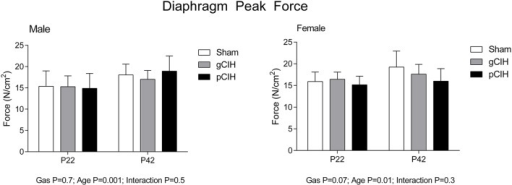 Effects of early life exposure to CIH on diaphragm muscle force in male and female rats under hypoxic conditions ex vivo. Group data (mean ± SD) for peak diaphragm force in male and female rats at postnatal day (P) 22 and P42 examined under control conditions ex vivo. Animals were exposed to sham (normoxia), gestational chronic intermittent hypoxia (gCIH), or postnatal CIH (pCIH). P-values following two-way ANOVA (gas × age) are reported.
