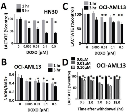 Lactate interrogation predicts doxorubicin cytotoxic effects in HNSCC and ALLDoxorubicin induced a dose-dependent decrease in cellular lactate levels in HNSCC HN30 A. and AML OCI-AML13 C. cell lines. B. OCI-AML13 cells were exposed to increasing doses of doxorubicin. NADH and NAD+ levels were ascertained biochemically and the ratio was calculated. Doxorubicin induced a dose dependent decrease in the NADH/NAD+ ratio. D. AML cells were exposed to either control media or media with doxorubicin at 0.01 and 0.1 μM for 1hr. Doxorubicin was then removed and cells were harvested at various time points following withdrawal. Lactate levels were measured at each time point and compared to the control (untreated) condition. * indicates p-value < 0.05 compared to corresponding control condition. All values normalized to corresponding control condition. Each experiment was carried out at least in triplicate, with values indicating means and error bars representing standard deviation.