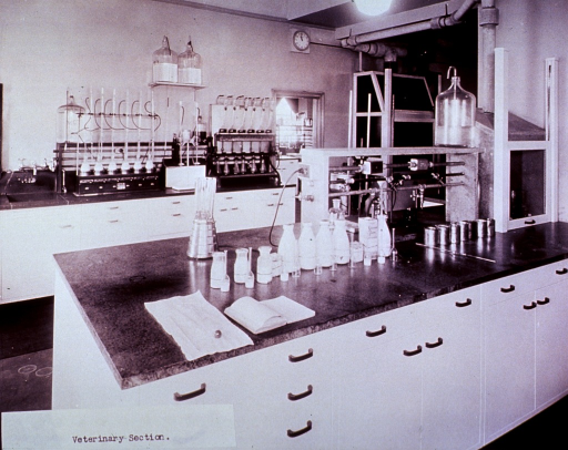 <p>Interior view: laboratory benches with cabinets underneath; glass apparatus arranged on the benches; also visible are gas outlets.</p>