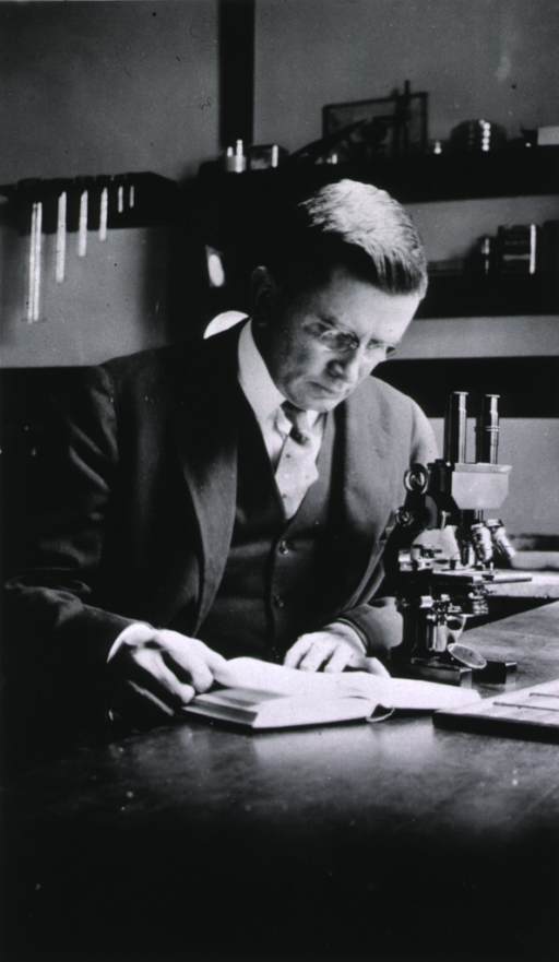 <p>Half-length, seated at table, right pose, head down, with book and microscope.</p>