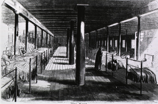 <p>The Naval Hospital &quot;Red Rover&quot; (the floating hospital on the Mississippi).  &quot;The Ward.&quot;  Interior with beds on either side.</p>