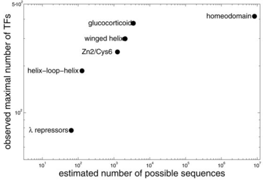 Correlation between the maximal number of transcription factors and number of possible sequences for six super-families, for which details of binding mechanism are known.