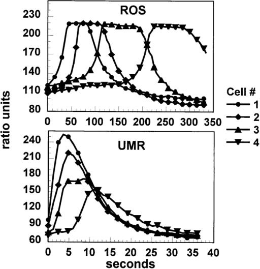 Kinetics of calcium  wave propagation in ROS  and UMR cells. Four cells in  a row from the stimulated  cells were analyzed from the  sequences shown in Figs. 2  and 3. Data are presented as  relative fluorescence ratio.