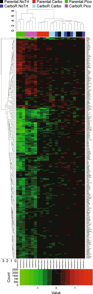 Dendrogram of two-dimensional hierarchical clustering analysis of differential expression by treatment. The heatmap indicates log2 fold change of all sample replicates relative to the average across arrays (aveA) for genes that were differentially expressed in any of the treatment contrasts; red upregulated and green downregulated. Due to the large basal gene expression differences between carboplatin-resistant and parental cells, fold changes were calculated relative to the no treatment group of the respective cell line to discern treatment-induced changes in each line. The line height of dendrograms indicates the Euclidean average distance between clusters. Treatment groups are represented by color below the treatment dendrogram on the x-axis (black parental, no treat; red parental, carbo; green parental, pico; dark blue carboR, no treat; light blue carboR, carbo; pink carboR, pico)