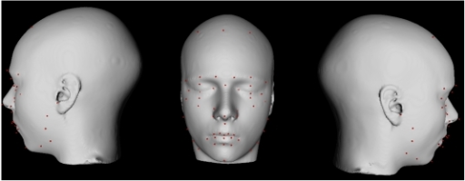Facial landmarks placed manually on a surface-based                                representation of the population-based atlas.Landmarks are defined in red.