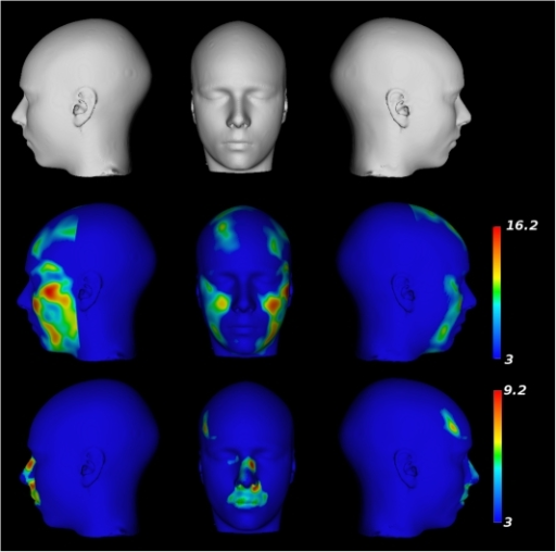 Results from the voxel-by-voxel analysis of deformation                            fields.Top Row: A surface rendered version of the population-based atlas. Middle                            Row: Parametric map projected onto the surface showing regions yielding                            statistically larger expansions in males in comparison to females.                            Bottom Row: Parametric map projected onto the surface showing regions                            yielding statistically larger expansions in females in comparison to                            males.