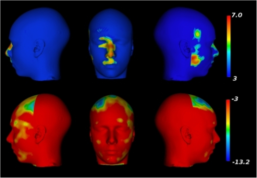 Facial morphometry changes related to age in females.Top row: Facial expansions related to age. Bottom row: Facial                            contractions related to age.