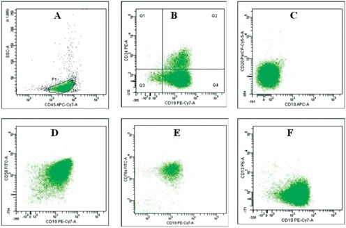 Immunophenotype of blasts at diagnosis in peripheral blood samples. A) CD45/SSC dot-plot. Blasts are included in P1 population. B) blasts are CD19-positive, with a minority of them (18%) being CD34-positive (Q2 quadrant). Blasts are CD10- and CD20-negative (C) and CD58-positive (D). E) positivity of CD79a. F) blasts are negative for CD13.