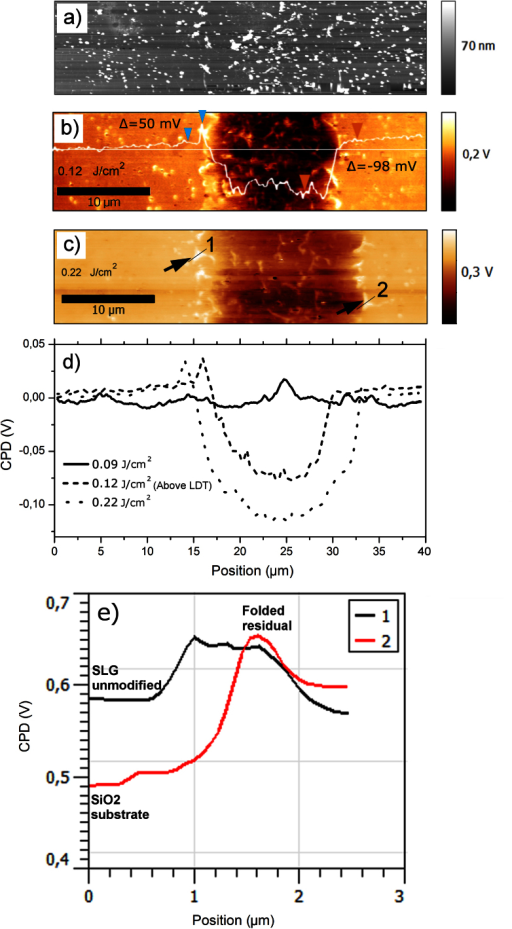 Scanning Kelvin probe force microscopy.Topography (a) and potential map of type 2 sample irradiated at (a, b) 0.12 J/cm2 and (c) 0.22 J/cm2; in (b) along a random horizontal line the ΔCP between pristine SLG and modified area is −98 ± 4 mV, while an increase of CPD is clearly visible all along the edges of the laser irradiation; between the blue arrows the increase is 50 ± 4 mV, compatible with a local folding of graphene layers; topography (a) cannot show any contrast. All images refer to a 20 × 40 μm2 area. In (d), plot of averaged CPD variation along X for three different irradiation powers: 0.09, 0.12, 0.22 J/cm2. Potential scale baselines (CPD SLG) have been set to zero. In (e) we plot two CPD profiles of the boundaries zones of scan (c), line 1 in black color is the left edge profile and line 2 in red color is the right edge profile as depicted in image (c).