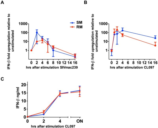 SIVmac239 and TLR7 agonists induce IFN-β production by SMs.PBMCs were stimulated with CL097 (A) or SIVmac239 (B), RNA was harvested at indicated time points and quantitated by qPCR. Fold-changes were normalized by GAPDH, and are expressed as relative to unstimulated replicates. Values are averages of three animals; values for individual animals were averaged from triplicate wells. (C) PBMCs from RMs and SMs were incubated for CL097 and supernatants were harvested at the times indicated and IFN-β was assessed by ELISA.