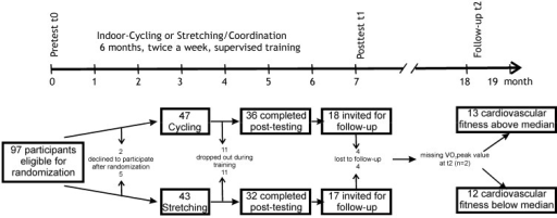 Study design and flow diagram showing the progress of participants through the phases of the study. Approximately half of the participants of the initial intervention study were assessed with magnetic resonance imaging (MRI) before and after the training. Only these participants were invited for a follow-up study one year after the end of the supervised training.