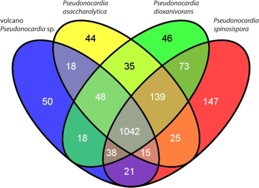 "Venn diagram of the shared and unique genes (COGs) among named Pseudonocardia spp. with complete genomes and the volcano Pseudonocardia sp. genome assembly. Although most of the 50 COGs unique to the volcano Pseudonocardia sp. (Supplementary Table 1) are classified as ""function unknown"" or ""general function prediction only,"" the six additional defense mechanism related COGs and the nine fewer carbohydrate transport and metabolism COGs in the volcano Pseudonocardia sp. stand out as potentially relevant functional differences with other Pseudonocardia spp."