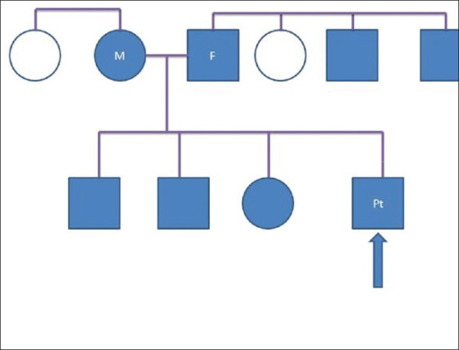 Pedigree chart: Eight members of the same family were affected. Blue square-male affected, blue circle-female affected, white circle-female unaffected, M: Mother, F: Father, Pt: Patient