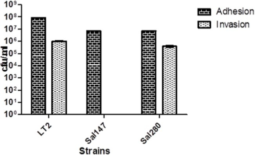 Adhesion and invasion of HT-29 cells by control strain S. Typhimurium LT2, S. Infantis Sal147, and S. Infantis Sal280.Data shown are means ± SEM from four independent experiments.
