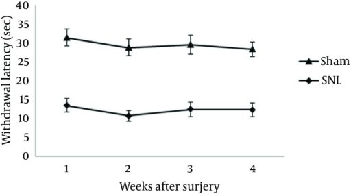 Thermal Withdrawal Latency of the Left Hind PawsPWT decreased in the SNL rats postoperatively on the first, second, third, and fourth weeks (P < 0.05 versus sham group). Data are presented as the mean ± SD.