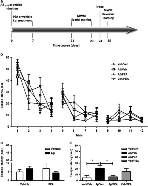 PEA rescues the Aβ-induced deficits in the reversal le