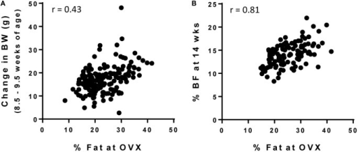 Screening strategies for OP and OR phenotype in female Wistar rats. Female rats were individually housed in wire bottom cages and fed a HF diet (46% kcal fat) for the duration of the study. Body weight and body composition were measured throughout the study and was correlated with % body fat at the time of OVX (maturity; 26.5 ± 0.6 weeks of age). (A) Change in body weight early in life (8.5–9.5 weeks of age) is not a strong predictor of adult adiposity, but (B) % body fat at 14 weeks of age does predict adult adiposity.