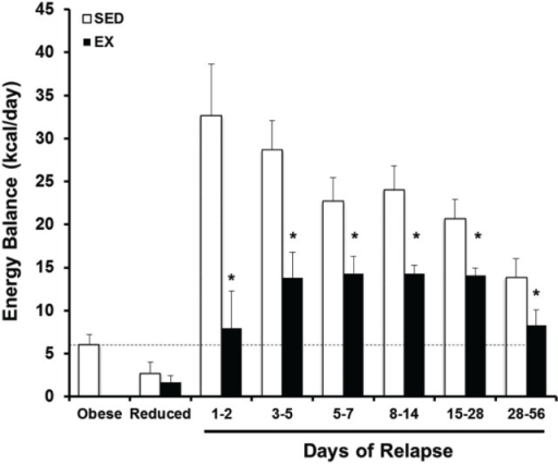 Prospective analysis of the energy gap during weight regain with and without exercise. Energy balance [energy intake – total energy expenditure (EI-TEE)] is shown for obese, weight reduced, and relapsing rats either with (EX) or without (SED) treadmill exercise for several time periods during relapse. During weight regain, the energy gap (energy imbalance) resolves gradually as body weight is gained. Further, exercise reduces the energy gap both by suppressing EI and increasing TEE. *Significant difference between SED and EX rats during that time period, P < 0.05. Modified from Ref. (55).
