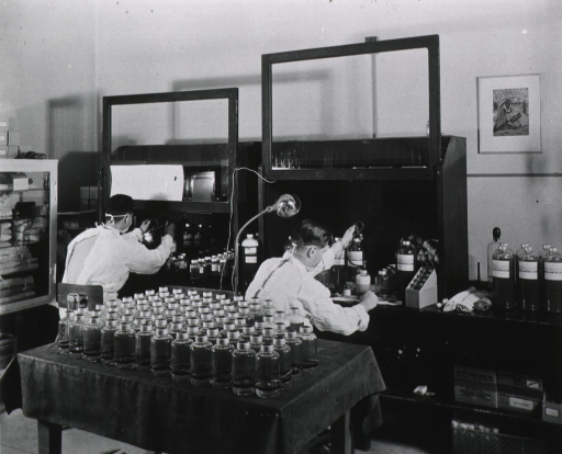 <p>Interior view: cloth covered table with bottles, long table with two raised windows at work areas and storage shelves below, a cabinet containing supplies, and a picture on the wall.  Facing the wall, two men in surgical masks and gowns are sitting at the work area.</p>