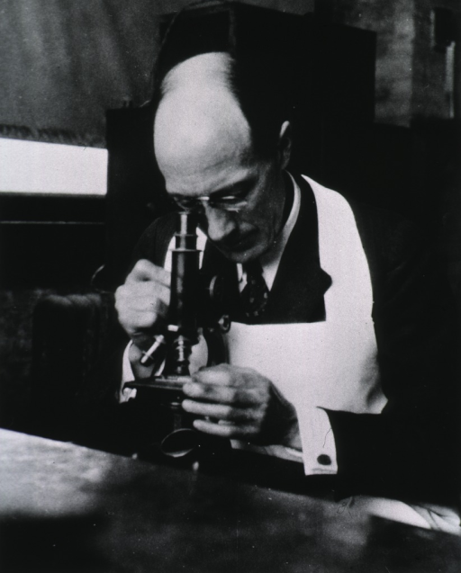 <p>Half-length, seated at table looking thru microscope.</p>