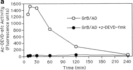 Blockade of caspase proteolytic activities with oligopeptide  inhibitors during GrB-induced apoptosis: effect on Ac-DEVD-afc fluorogenic activity and cleavage of death substrates, PARP, snRNP, and lamin  B. (a) z-DEVD-fmk (100 μM) inhibits Ac-DEVD-afc cleavage during  GrB/AD-mediated apoptosis. Target cells were pretreated with z-DEVD-fmk for 15 min. After exposure to GrB/AD for the times indicated, cells  were withdrawn for measurement of fluorogenic Ac-DEVD-afc activity.  (b) Generation of the apoptotic fragments of PARP, snRNP, and lamin B  is completely inhibited by the combination of z-DEVD-fmk and z-VAD-fmk. Total Jurkat cell lysates obtained from control cells and cells treated  for 1, 4, and 18 h with either GrB alone, GrB/AD, or GrB/AD plus  z-DEVD-fmk and z-VAD-fmk. The lysates were electrophoresed in 12%  SDS–polyacrylamide gels and proteins were transferred to nitrocellulose.  Individual lanes (containing protein corresponding to ∼106 cells) were  reacted with specific human autoantibodies to PARP, snRNP, and lamin  B. Representative blots are shown. Intact proteins are indicated by lines,  whereas proteolytic fragments are indicated by arrows. Numbers to the  right represent relative molecular weights.