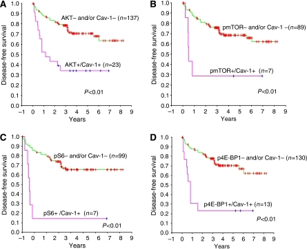 Kaplan–Meier metastasis-free overall survival estimates of RCC patients with clinically confined disease according coexpression of caveolin-1 with (A) pAKT, (B) pmTOR, (C) pS6 and (D) p4E-BP1. Patients who coexpressed caveolin-1 and activated components of the AKT/mTOR pathway had significantly worse prognosis compared with patients whose tumours were negative for either biomarker and/or had single biomarker-positive expression.