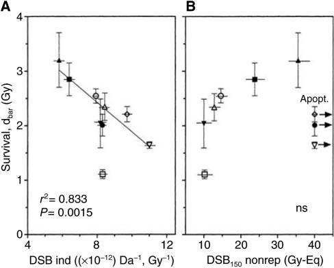 Relationship between dsb and cellular radiosensitivity. (A) Number of dsb induced per Gy and per Da (as calculated from Figure 4) and (B) number of dsb measured 24 h after 150 Gy (taken from Figure 5B) were plotted vs cellular radiosensitivity expressed as Dbar (from Table 1).