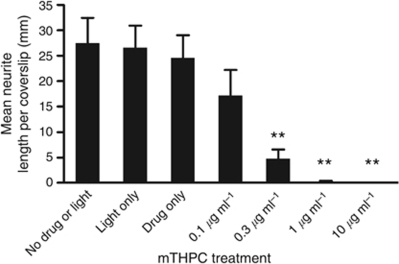 Reduction in neurite length due to mTHPC-mediated PDT. Dorsal root ganglion neurons were cultured on coverslips for 3 days, then treated with various concentrations of mTHPC and light, then maintained in culture for a further 24 h before fixation and quantification of the total length of all β-III-tubulin immunoreactive neurites. Data are means±s.e.m., N=4. (**P<0.001 for treatments compared with no drug or light control, one-way ANOVA with Dunnett's multiple comparison post test).
