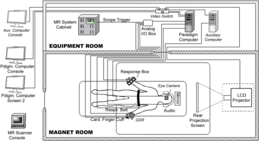 diagram of behavioral hardware connections  fmri data a