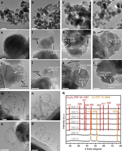 Morphological properties of oxidized Co@C nanocapsules.TEM and HRTEM images of (a,e,i) the pristine and samples that were oxidized at (b,f,j) 200, (c,g,k) 225 and (d,h,l) 250 °C, as well as (m–p) the residual carbon shells in the oxidized samples at 225 °C after washing by hydrochloric acid. Scale bars, 50 (a–d), 5 (e–l) and 10 nm (m–p). (q) XRD spectra of oxidized samples.