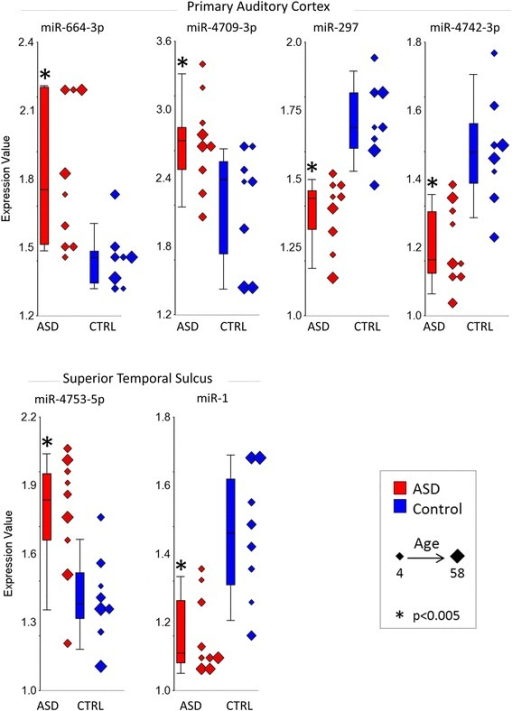 Expression levels of significant miRNA is STS and PAC. Expression levels of microRNA (miRNA) that had significantly increased or decreased expression in ASD compared to control subjects in the superior temporal sulcus and in the primary auditory cortex (P < 0.005 and fold change > /1.2/). ASD values are in red, and control (CTRL) values are in blue. Note that individual subjects are plotted along with box and whisker plots, and the size of the diamonds for each individual corresponds to age of the subject
