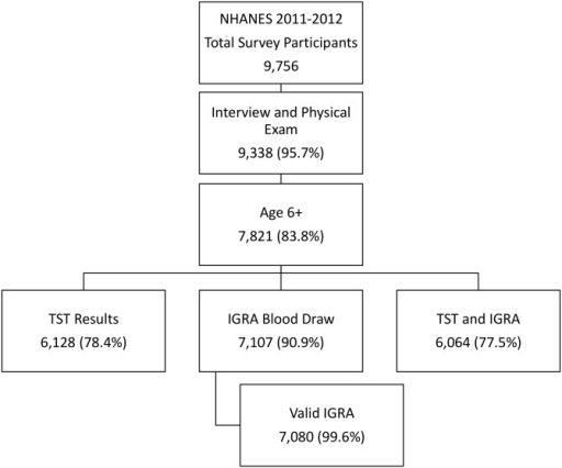 Flow chart illustrating participation in the 2011–2012 National Health and Nutrition Examination Survey, including total survey participants and number and percentage of survey participants who had tuberculin skin and interferon gamma release assay tests and results.