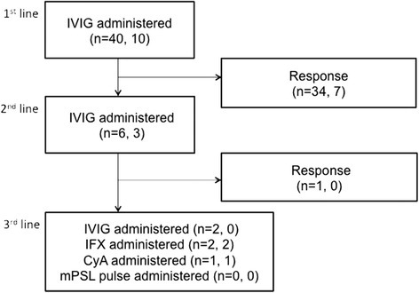 Flow chart showing the distribution of study subjects and medications used for KD in the RAISE group. The numbers in parentheses denote the overall number of patients in the RAISE group, and the number in the RAISE group who received PSL because of risk scores ≥5 points, respectively. IVIG: intravenous immunoglobulin, IFX: infliximab, CyA: cyclosporin, mPSL: methylprednisolone