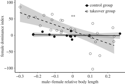 Female resistance to male takeover was high when females were larger than the takeover males, but diminished when the takeover males were larger (dashed line). This pattern was not observed in the control groups (solid line). 95% confidence intervals shown. ** indicates p < 0.01.