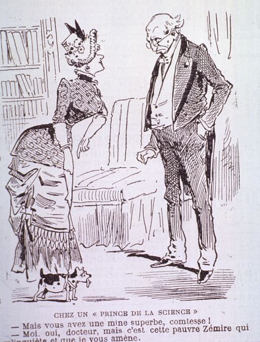 <p>Caricature:  A woman has a very small, sick dog on a leash consults a physician, who stands with one hand in his pocket and looking over the top of his glasses.</p>