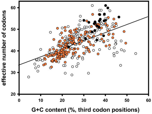 Effective number of codons versus G+C content in third codon position in crustacean mitochondrial genes. All species with complete mitochondrial genome entries are included (for a species list, GenBank accession numbers and single values see supplementary Table 1). For each species eleven mitochondrial protein-coding genes were evaluated and plotted (all except nad4L and atp8, which contain less than 100 codons). Black dots: genes from Isopoda; orange dots: genes from all other Malacostraca; white dots: genes from Crustacea excl. Malacostraca. Regression line with r2 = 0.3381; p < 0.01.