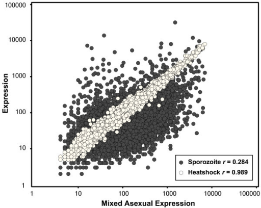 Gene-by-gene comparison of expression levels for mixed asexual versus sporozoite stages and mixed asexual parasites versus heat shock treated mixed asexual parasites. While expression levels for many genes vary widely between mixed asexual and sporozoite stages (dark gray points, Pearson's r = 0.284), little difference is observed in expression levels in mixed asexual parasites before and after heat shock treatment (white points, Pearson's r = 0.989) demonstrating a lack of robust transcriptional response to environmental perturbations at the level of transcription.