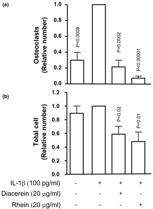 Effect of diacerein and rhein on osteoclast (a) proliferation/differentiation and (b) total cells. Raw 264.7 cells were incubated for 7 days with RANKL (100 ng/mL) in the presence or absence of interleukin-1-beta (IL-1β) (100 pg/mL) and diacerein or rhein (20 μg/mL). The number of differentiated osteoclasts was determined by the tartrate-resistant acid phosphatase staining assay. Data are expressed as fold changes compared with IL-1β-treated control, which was assigned a value of 1. Statistical analysis was performed versus IL-1β-treated control. RANKL, receptor activator of nuclear factor-κB ligand.