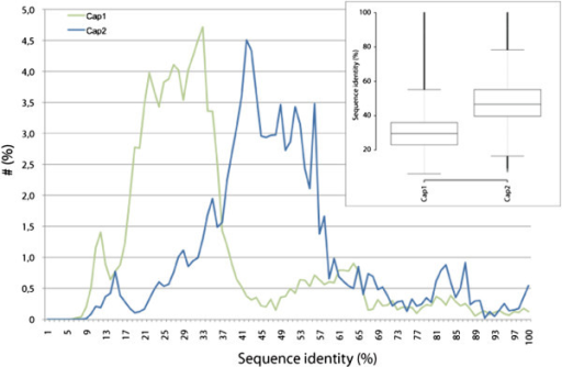 Sequence identity comparison of CP subunits. The scores of the sequence identity matrices of the CP subunits were rounded and the percentage of sequences plotted against the sequence identity. The inlet contains box plots of the data for each CP subunit. 368 α-subunit and 299 β-subunit CP sequences were derived from CyMoBase [44,45]. For calculating the sequence identities poorly aligned positions and divergent regions of the alignments were removed using Gblocks [46]. Sequence identity matrices (2D-matrix tables containing sequence identities scores for each pair of sequences) were obtained by calculating the ratio of identities to the length of the longer of the two sequences after positions where both sequences contain a gap were removed.
