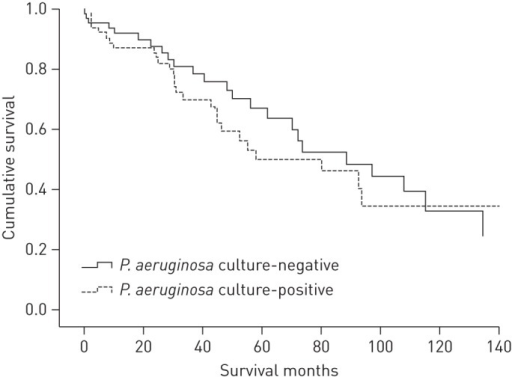 Kaplan–Meier survival curve for the Pseudomonas aeruginosa culture-positive and P. aeruginosa culture-negative groups. p=0.49 for P.aeruginosa culture-negative patients.