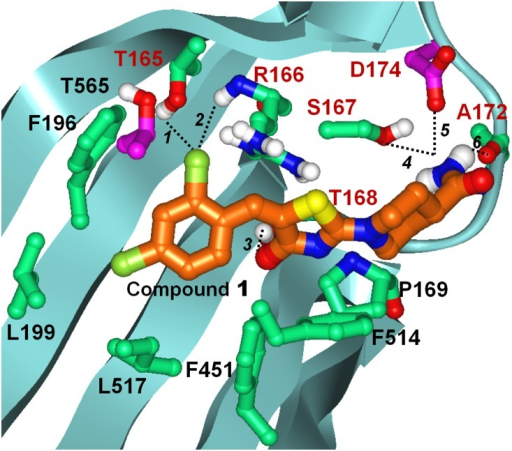 Induced Fit docked pose of compound 1 at the M. smegmatis AspS crystal structure.Only amino acids forming direct interactions with compound 1 are shown. Carbon atoms of AspS are colored light green except for carbons of resistance conferring mutant site residues, which are colored purple. Carbons of compound 1 are shown in orange; all other atoms are colored by atom type (Oxygen red, Nitrogen blue, Sulphur yellow, Chlorine dark green, Hydrogen white). Labels of residues participating in polar interactions are colored brown, labels of all other residues are in black. Polar interactions are indicated with dashed lines and are numbered. Distances between heavy atoms of the atoms groups participating in polar interactions are as follows: 1. 3.1 Å; 2. 3.8 Å; 3. 3.0 Å; 4. 3.2 Å; 5. 3.1 Å; 6. 3.7 Å.