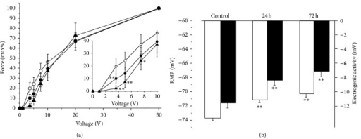 Hindlimb suspension decreases excitability and alters electrogenesis of rat soleus muscle. (a) force-voltage relationships of twitch tensions in control soleus muscles (open circles, n = 18), after 24 h (closed circles, n = 15) and 72 h (triangles, n = 8) of HS. Force-voltage relationships were determined using 1 ms stimuli (direct stimulation) of increasing voltage to elicit maximum force of twitch tension. % to force obtained at supramaximal stimulation is shown. Insert-expanded curve for voltages below 10 mV; points that significantly differ from corresponding control points are marked by asterix. (b) The resting membrane potential (white columns) and total electrogenic activity of the Na,K-ATPase (black columns) in control soleus muscles and after 24 h and 72 h of HS. *P < 0.05; **P < 0.01 compared to respective control.