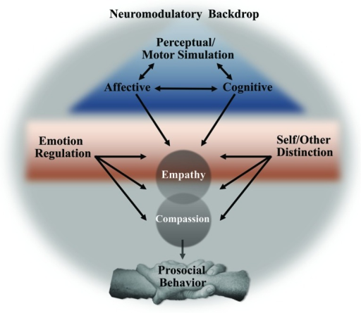 Proposed model linking core neural processes, active amidst a neuromodulatory backdrop, leading to empathy, compassion, and prosocial behavior.