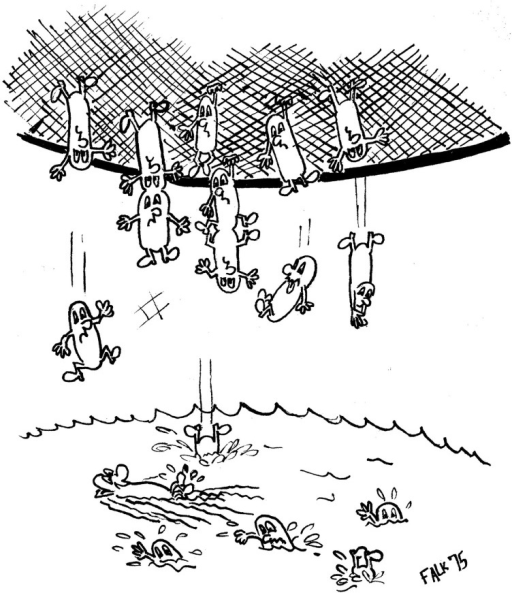 Bacterial baby machine cartoon. Caricature of the technique sketched by Avshalom Falk while a student in the laboratory of Eliora Ron at Tel Aviv University.